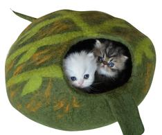 green leaf cat cave
